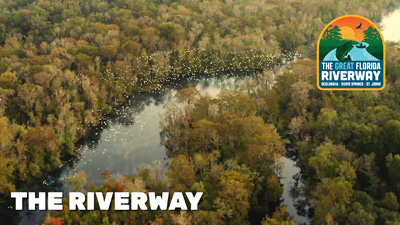 the riverway