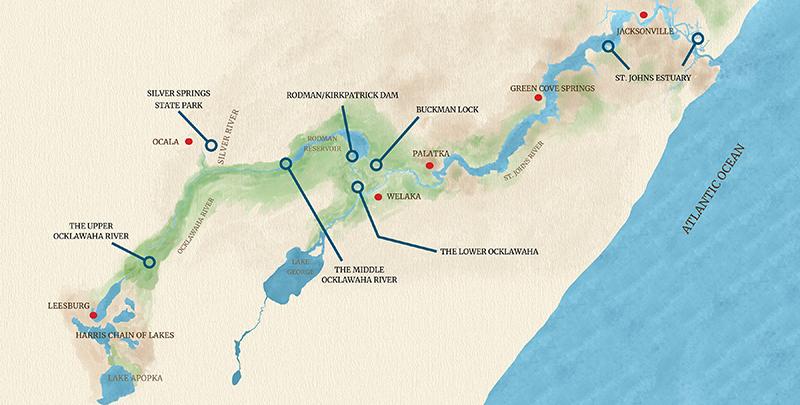 TGFW-Editable-WaterColor-Map