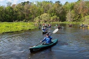 the restored Ocklawaha paddling trail